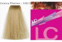 120-1-ceniza-platino-profesional