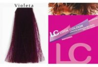 color-violeta-profesional